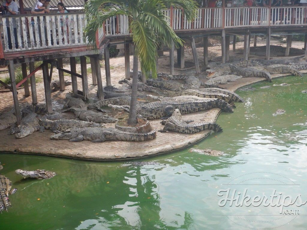 Samutprakarn Crocodile Zoo and Farm