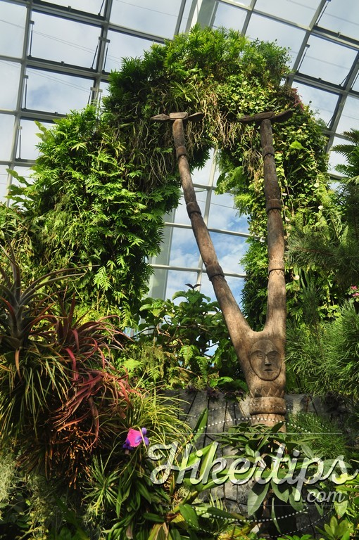 The Cloud Forest Dome,Singapore